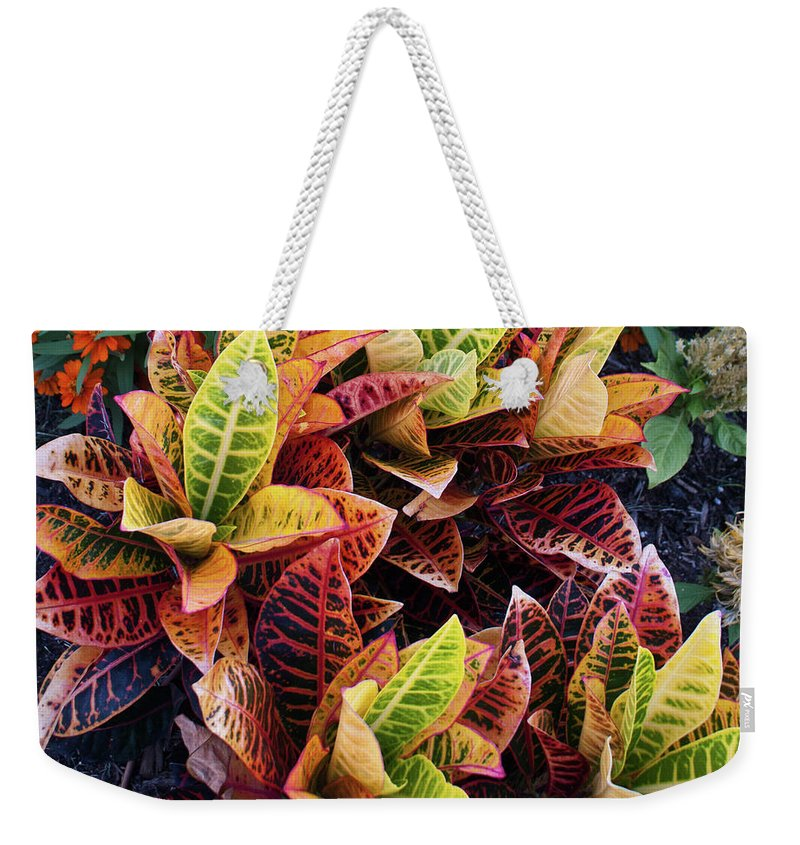 Flames Weekender Tote Bag featuring the photograph Flames of Delight by Douglas Barnett