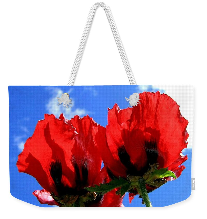Blue Weekender Tote Bag featuring the photograph Flaming Skies by Will Borden