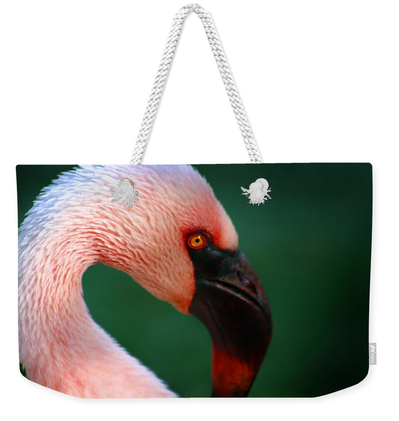 Flamingo Weekender Tote Bag featuring the photograph Flamingo by Anthony Jones