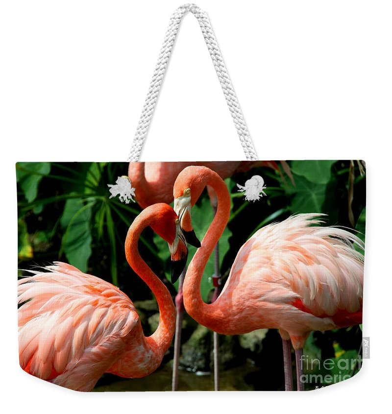 Pink Flamingo Weekender Tote Bag featuring the photograph Flamingo Heart by Barbara Bowen