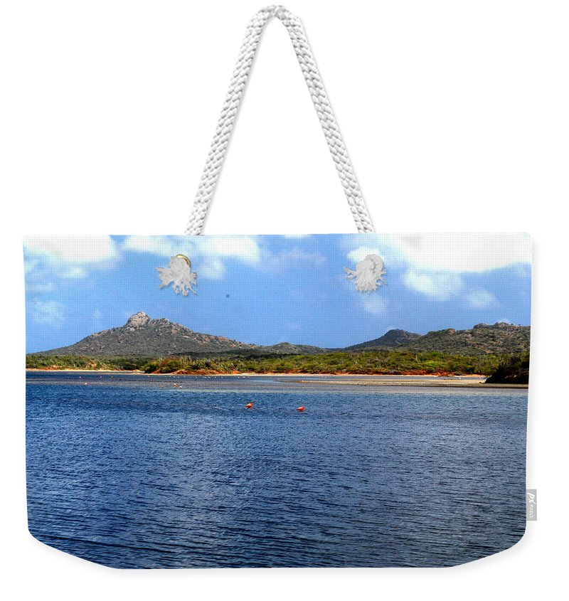 Flamingo Weekender Tote Bag featuring the photograph Flamingo's Home by Gary Wonning