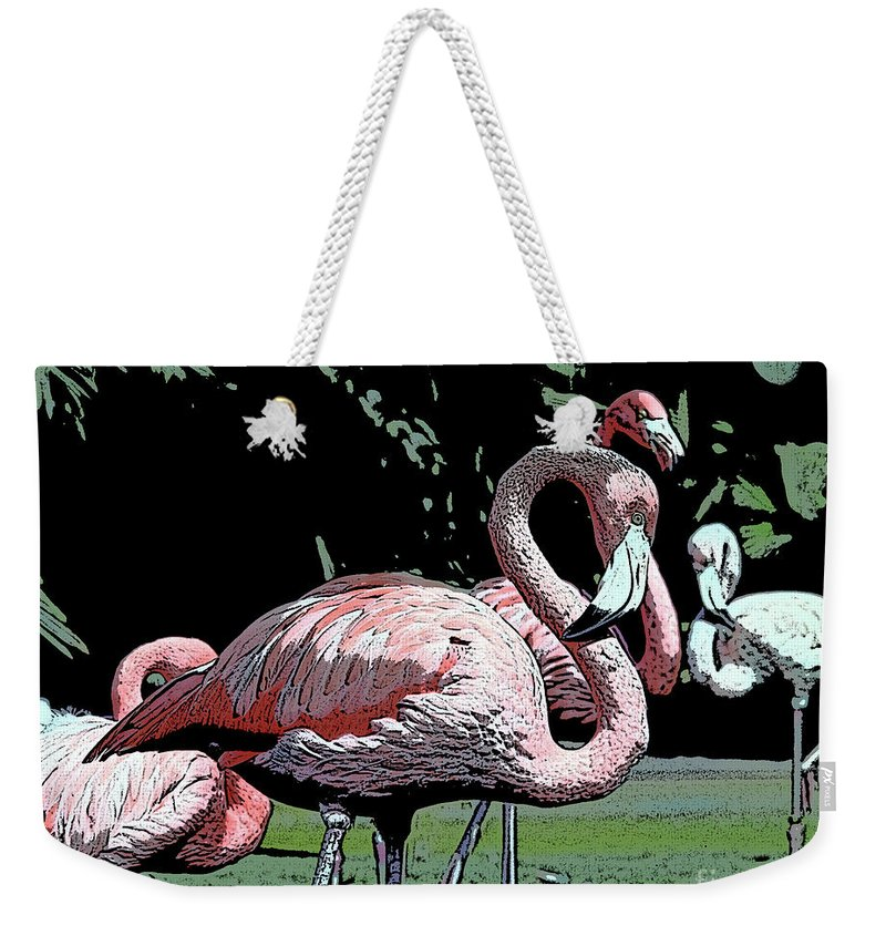 Pink Weekender Tote Bag featuring the photograph Flamingos I by Jim And Emily Bush