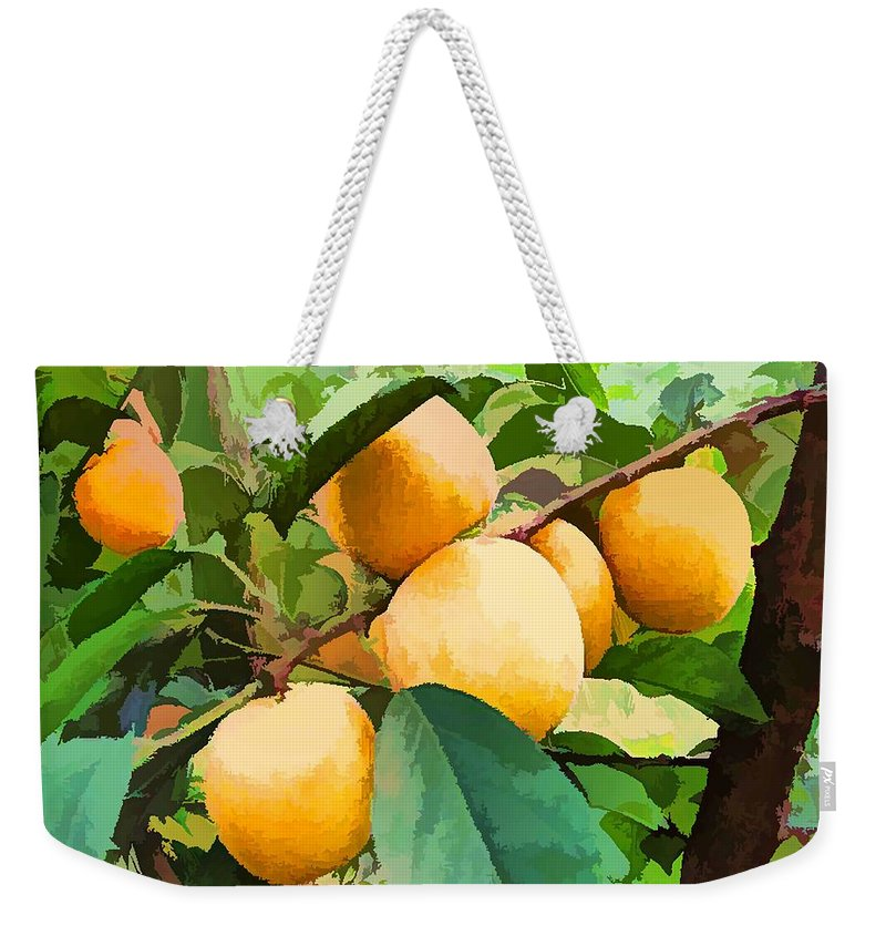Agriculture Weekender Tote Bag featuring the painting Fleshy Yellow Plums On The Branch by Jeelan Clark