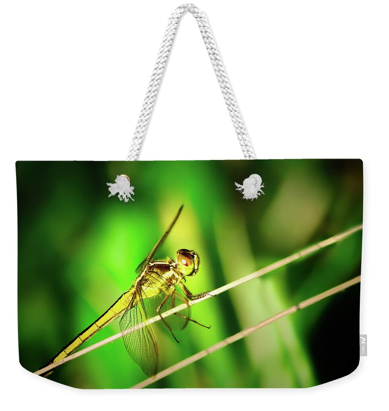 Dragonfly Weekender Tote Bag featuring the photograph Flight Clearance by Mark Andrew Thomas