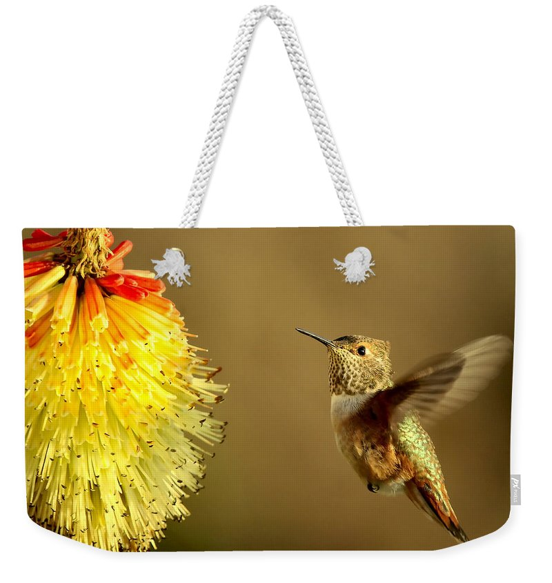 Hummingbird Weekender Tote Bag featuring the photograph Flight Of The Hummer by Mike Dawson