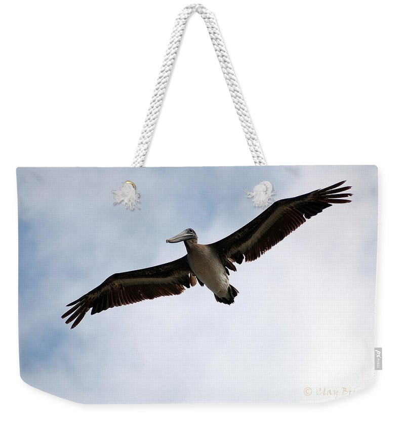 Clay Weekender Tote Bag featuring the photograph Flight Of The Pelican by Clayton Bruster