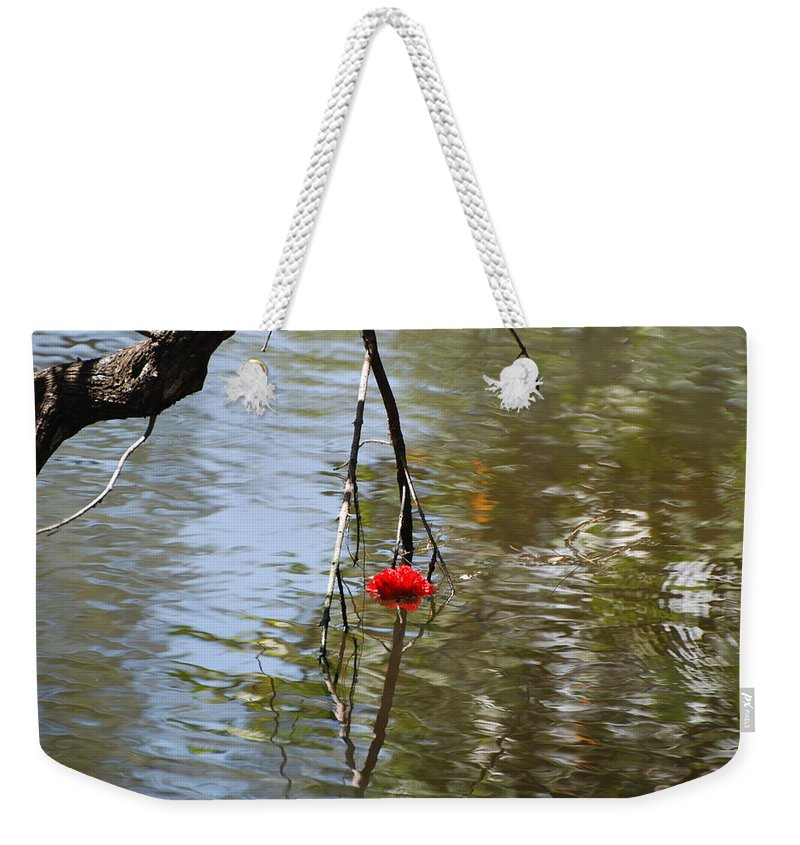 Water Weekender Tote Bag featuring the photograph Floating Flower by Rob Hans