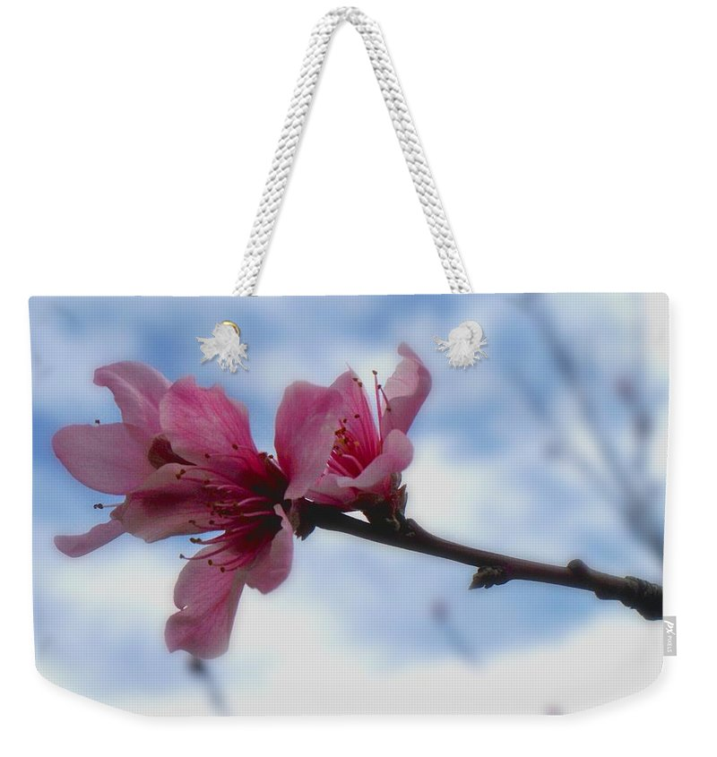 Peach Weekender Tote Bag featuring the photograph Floating On Air by Betty Northcutt