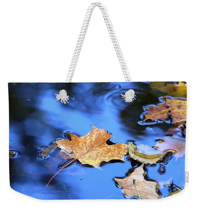 Autumn Weekender Tote Bag featuring the photograph Floating On The Reflected Sky by Doris Potter