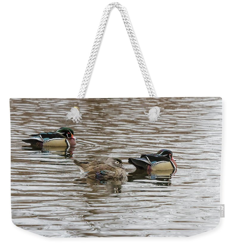 Wildlife Weekender Tote Bag featuring the photograph Flocked by Barbara Blanchard
