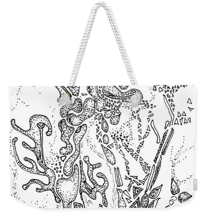 Flora Weekender Tote Bag featuring the drawing Flora Aceo by Regina Valluzzi