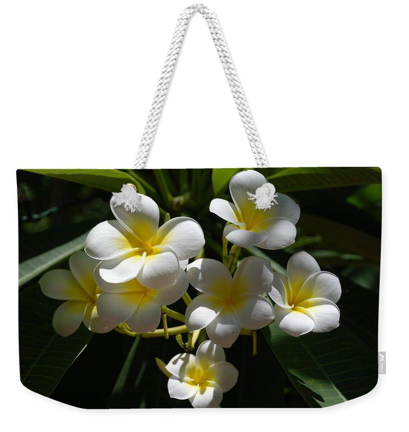 Nature Weekender Tote Bag featuring the photograph Floral Beauties by Rob Hans