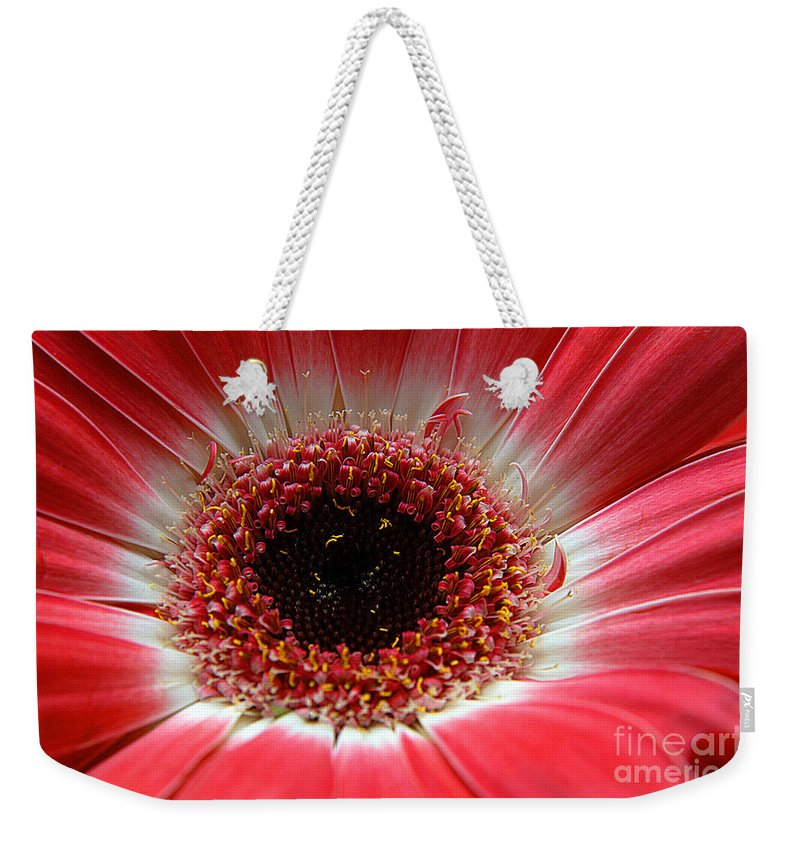 Clay Weekender Tote Bag featuring the photograph Floral Eye by Clayton Bruster