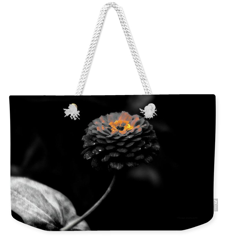 Zinnia Weekender Tote Bag featuring the photograph Floral October Zinnia End Of Season Sc 01 by Thomas Woolworth