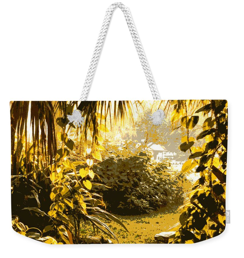 Sunlight Weekender Tote Bag featuring the photograph Florida Dream by Carol Groenen