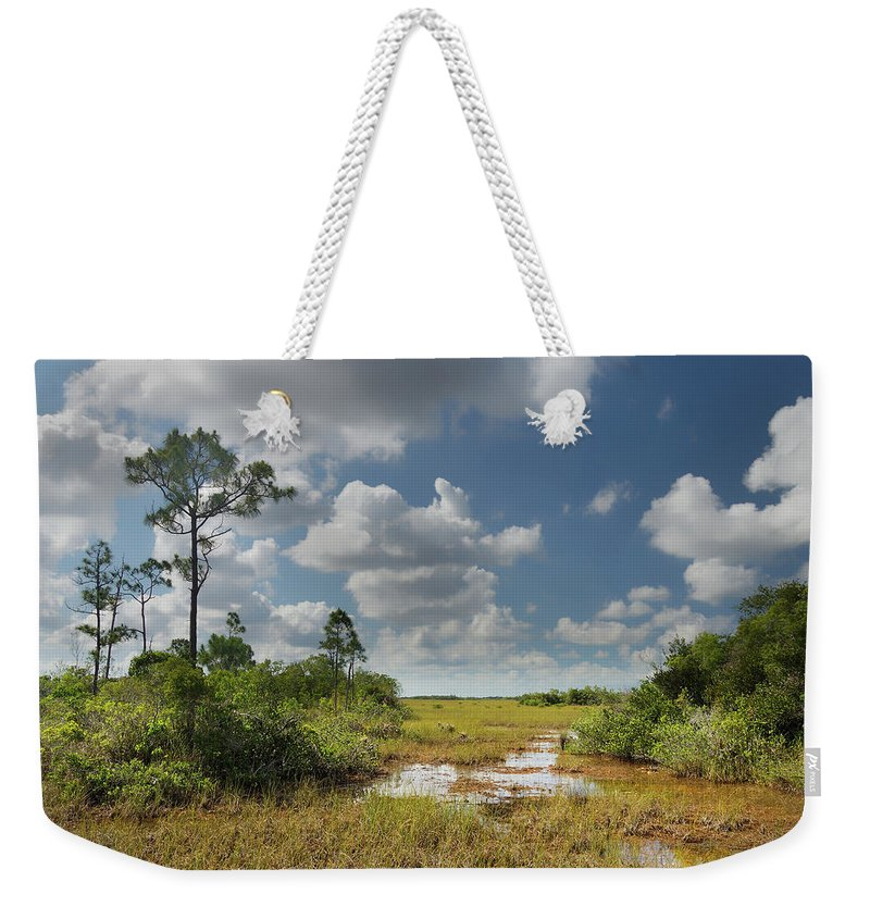Everglades Weekender Tote Bag featuring the photograph Florida Everglades by Rudy Umans