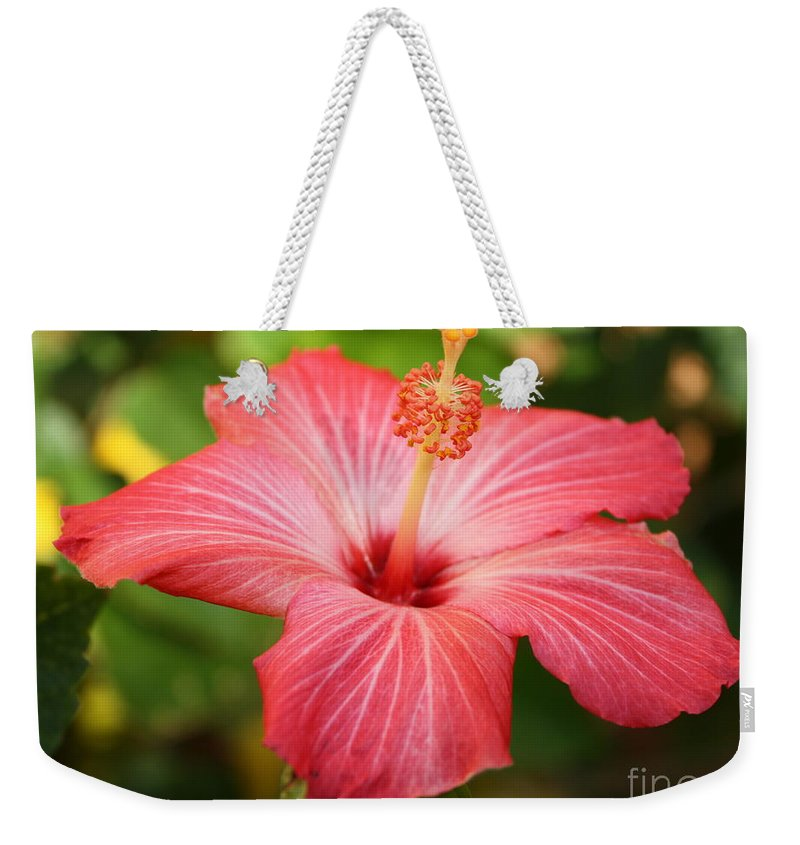 Pink Hibiscus Weekender Tote Bag featuring the photograph Florida Hibiscus by Carol Groenen