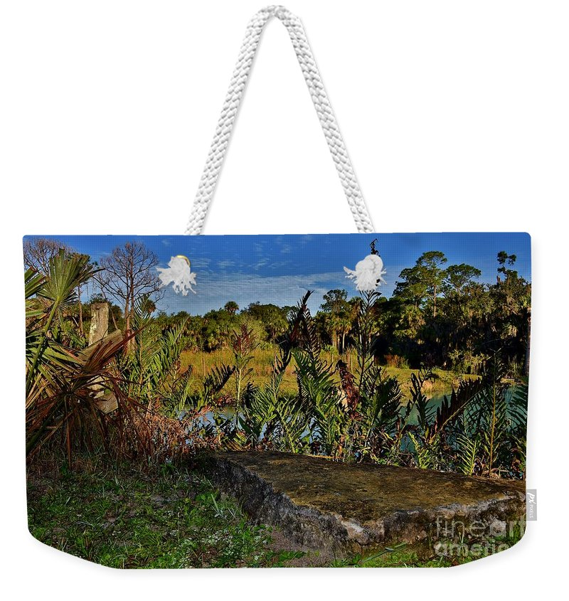 Florida Lands Weekender Tote Bag featuring the photograph Florida Lands 6 by Lisa Renee Ludlum