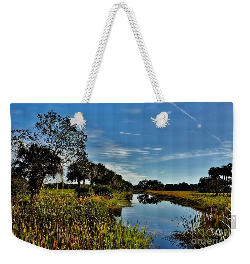 Florida Lands Weekender Tote Bag featuring the photograph Florida Lands 7 by Lisa Renee Ludlum