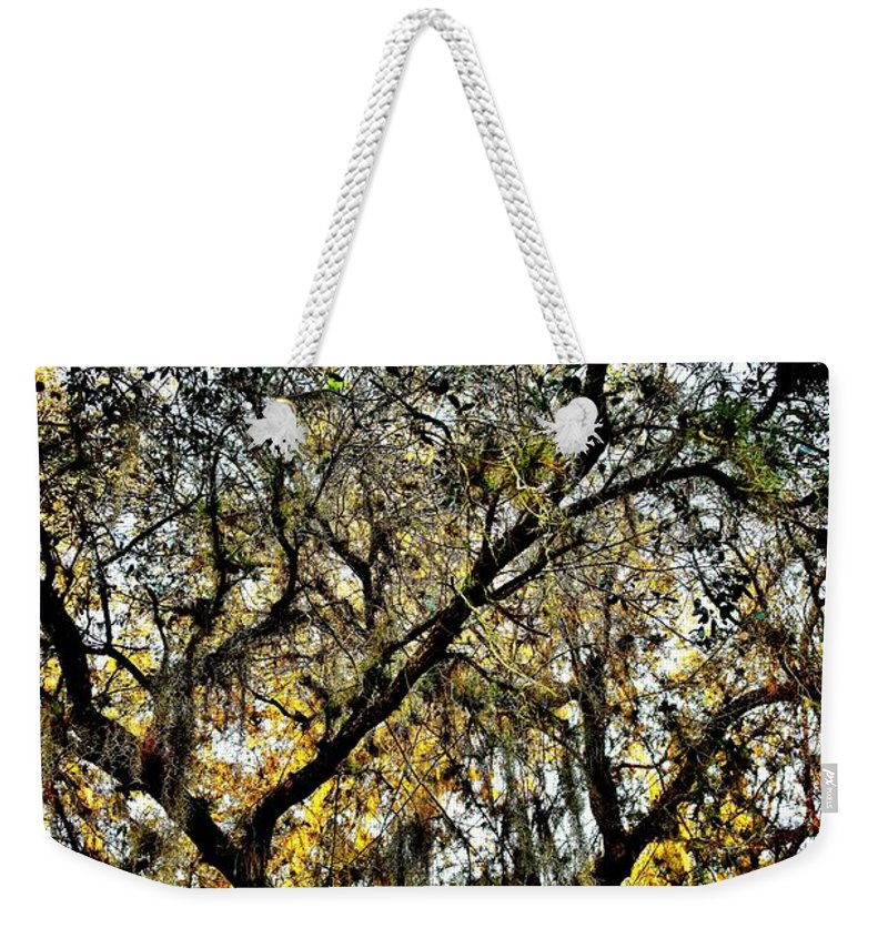Golden Moss Weekender Tote Bag featuring the photograph Golden Moss by Lisa Renee Ludlum