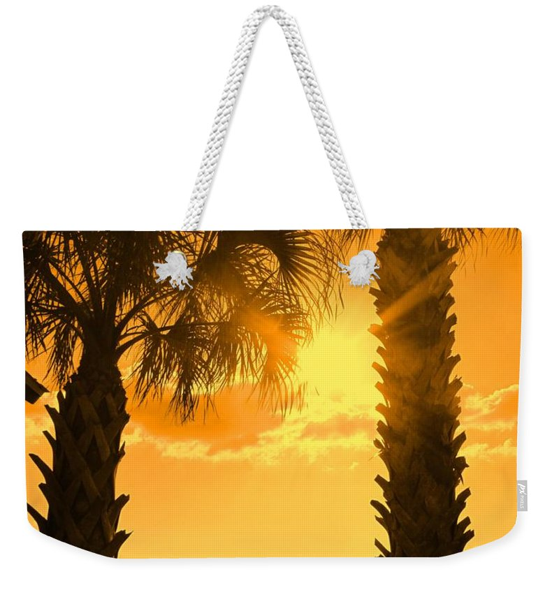 Palm Weekender Tote Bag featuring the photograph Florida Orange by Ian MacDonald