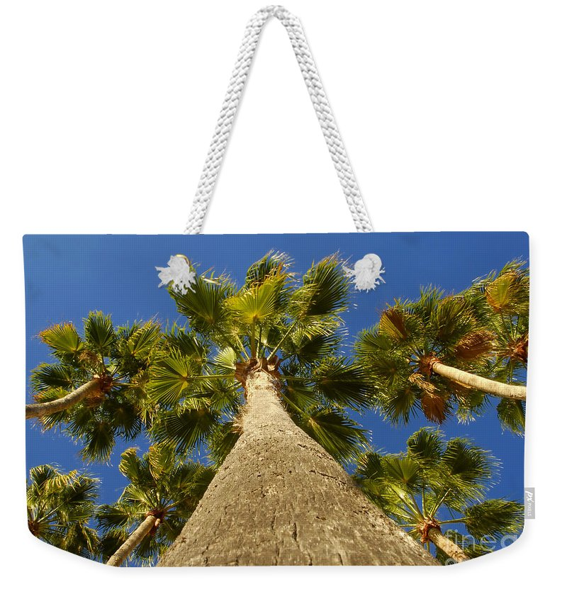 Florida. Palm Trees. Tropical Weekender Tote Bag featuring the photograph Florida Palms by David Lee Thompson