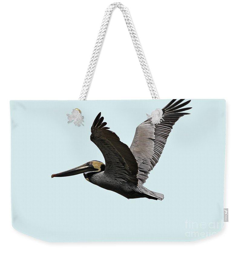 Bird Weekender Tote Bag featuring the photograph Florida Pelican In Flight by Deborah Benoit
