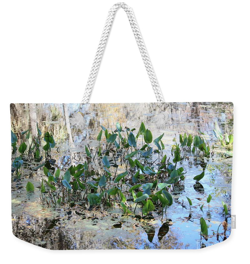 Florida Pond Weekender Tote Bag featuring the photograph Florida Pond by Carol Groenen