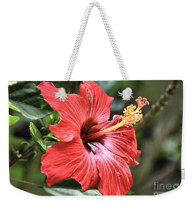 Flower Weekender Tote Bag featuring the photograph Florida Red by Deborah Benoit
