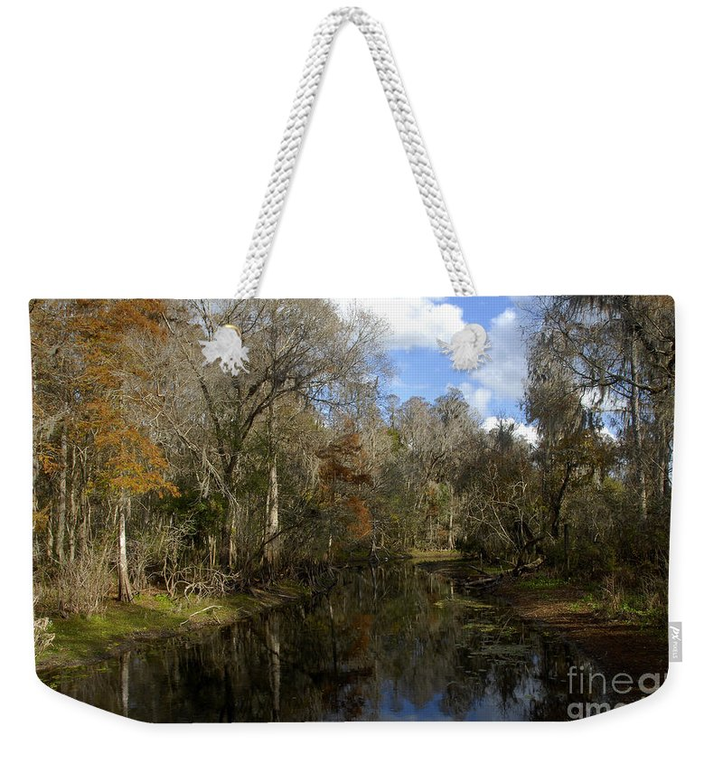 Wetlands Weekender Tote Bag featuring the photograph Florida Wetlands by David Lee Thompson