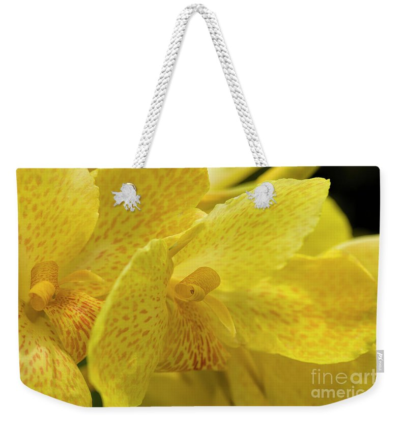 Photographs Weekender Tote Bag featuring the photograph Flower, A Soul Blossoming In Nature by Felix Lai