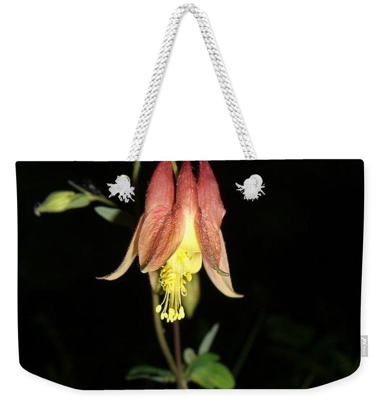 Flower Weekender Tote Bag featuring the photograph Flower by Amanda Kabat