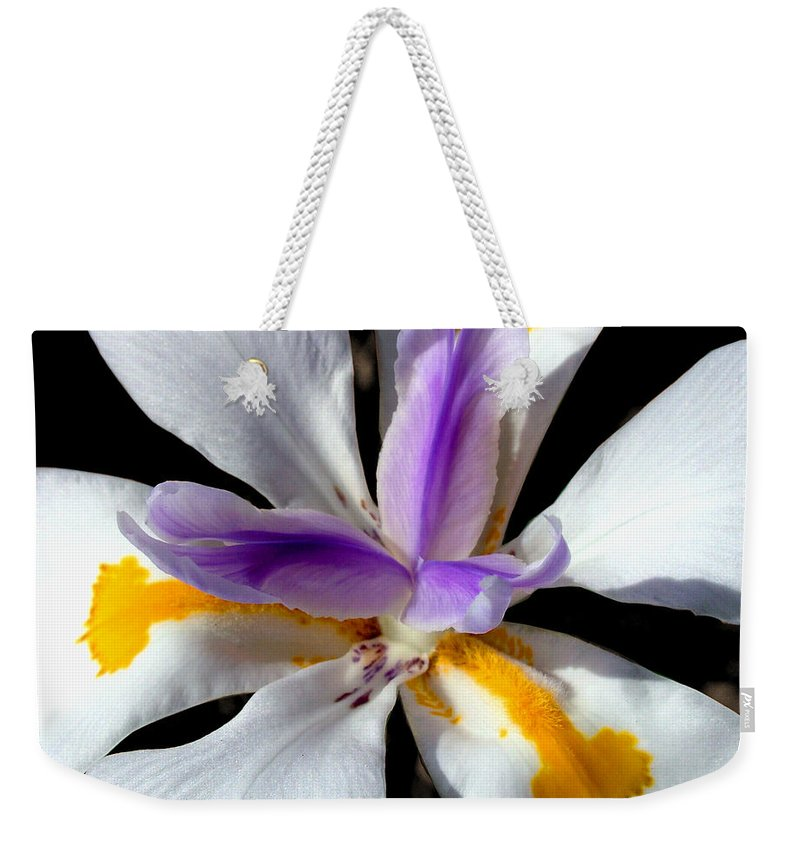 Flowers Weekender Tote Bag featuring the photograph Flower by Anthony Jones