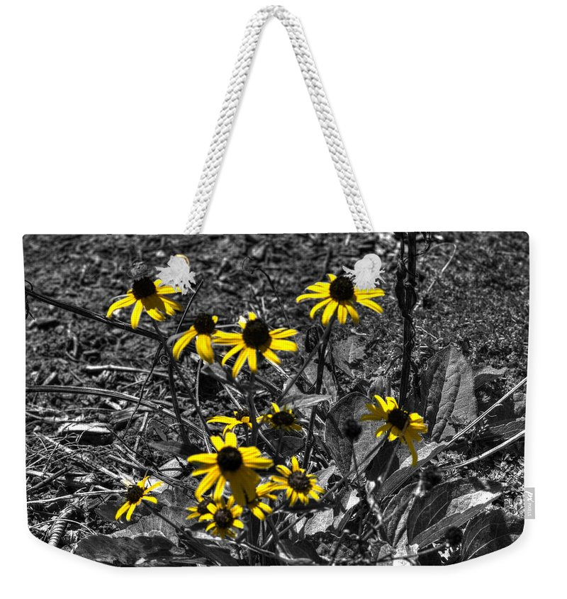 Nature Weekender Tote Bag featuring the photograph Flower Black Eyed Susan by John Straton