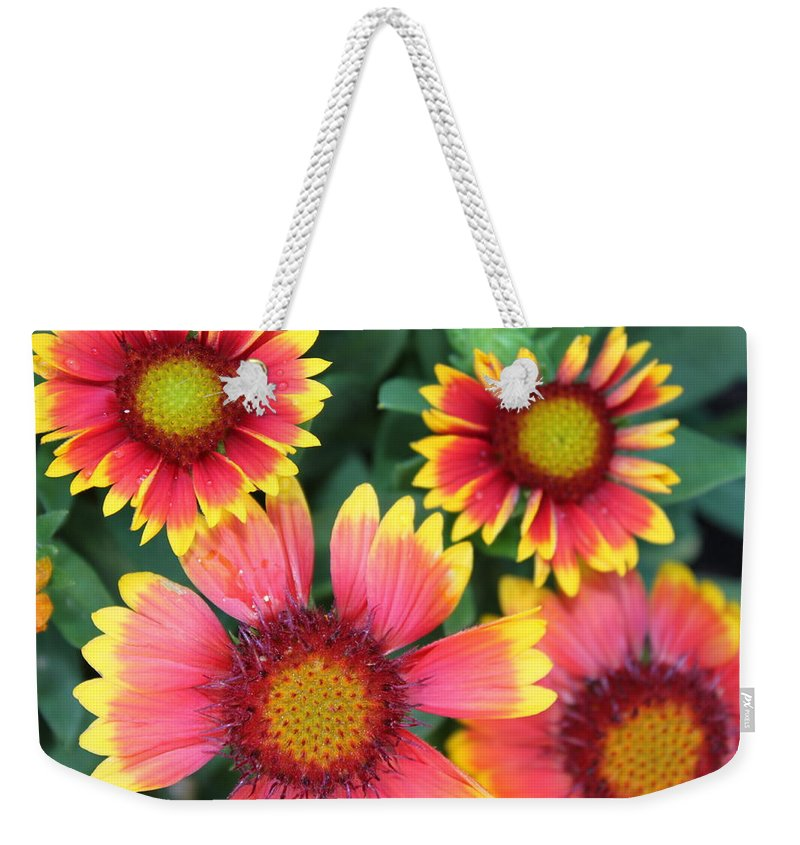Flower Weekender Tote Bag featuring the photograph Flower Burst by Lauri Novak