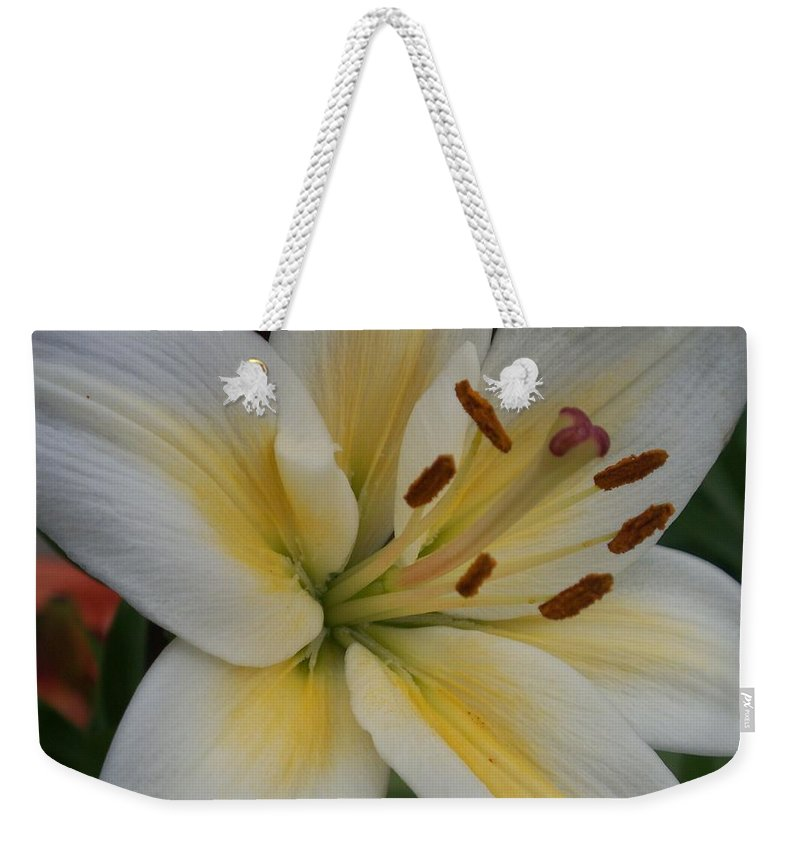 Flower Weekender Tote Bag featuring the photograph Flower Close Up 1 by Anita Burgermeister