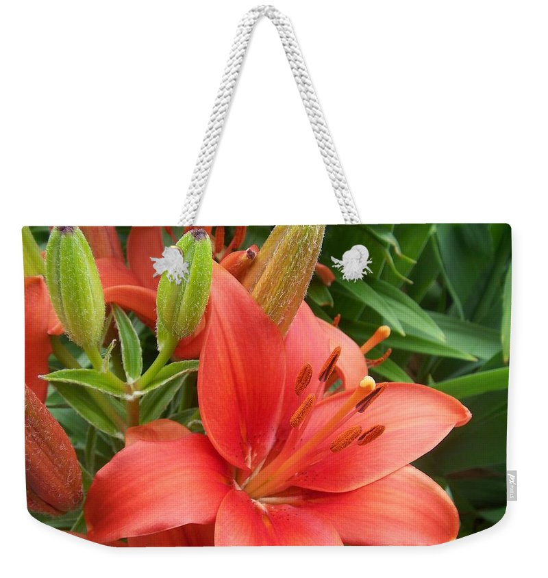 Flower Weekender Tote Bag featuring the photograph Flower Close Up 4 by Anita Burgermeister