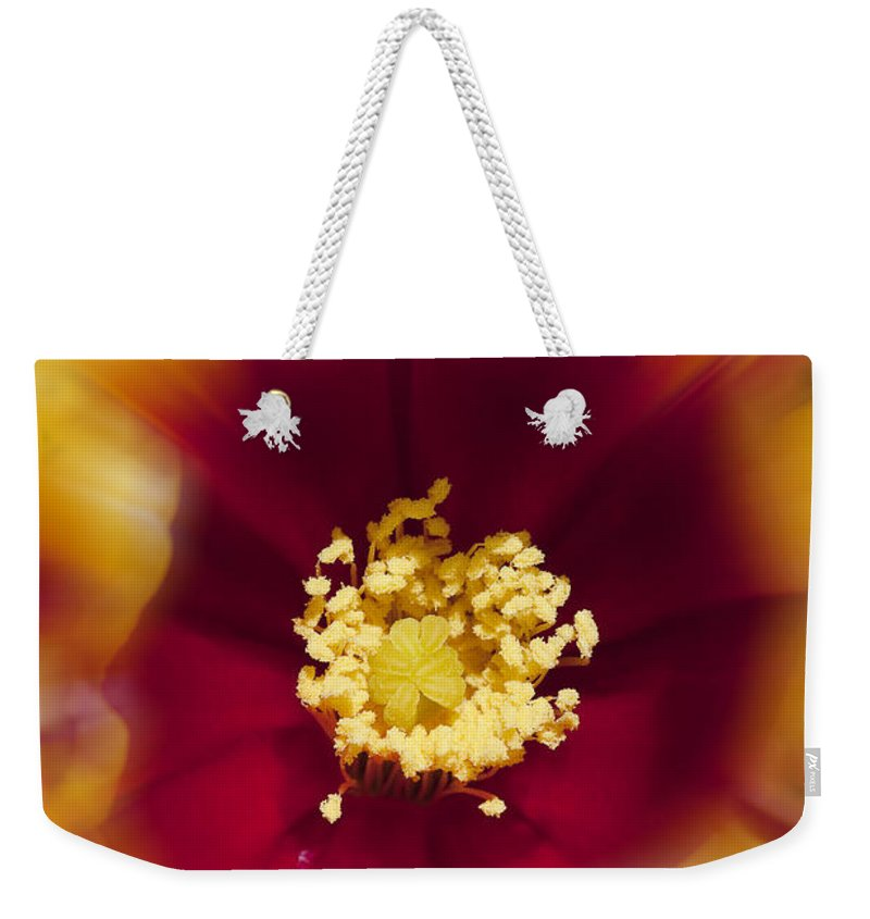 Flowers Weekender Tote Bag featuring the photograph Flower Graphic by Kelley King