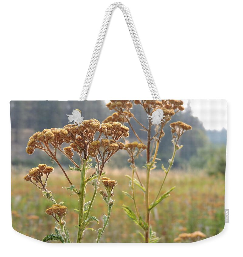 Flower Weekender Tote Bag featuring the photograph Flower In Focus by Nicholas Fonte