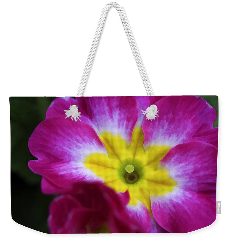 Flower Weekender Tote Bag featuring the photograph Flower In Spring by Deborah Benoit