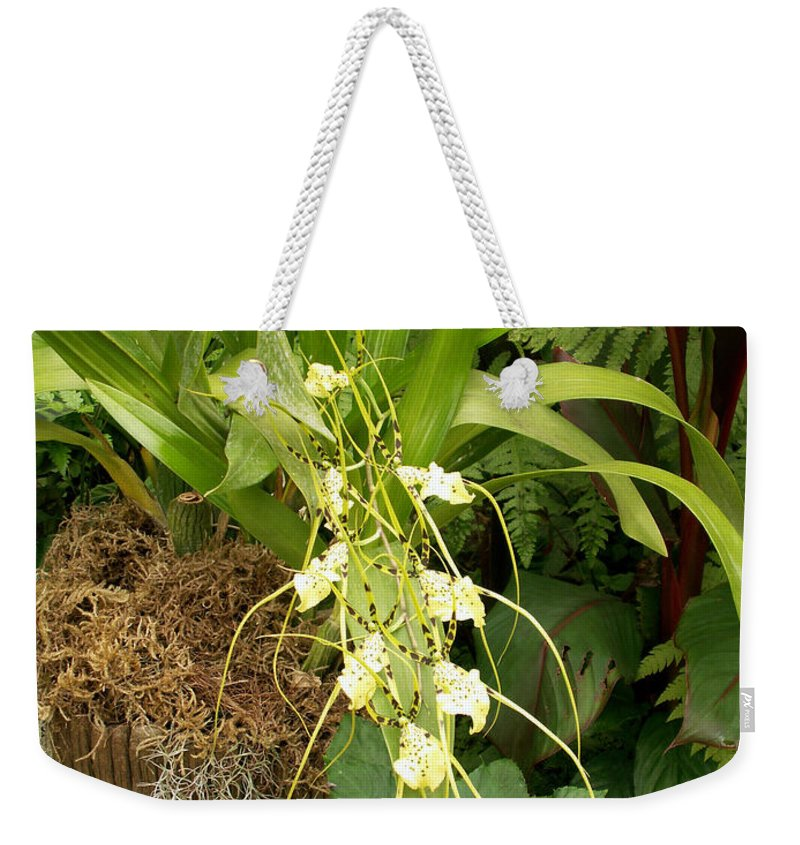 Flower Weekender Tote Bag featuring the photograph Flower Mix by Amy Fose