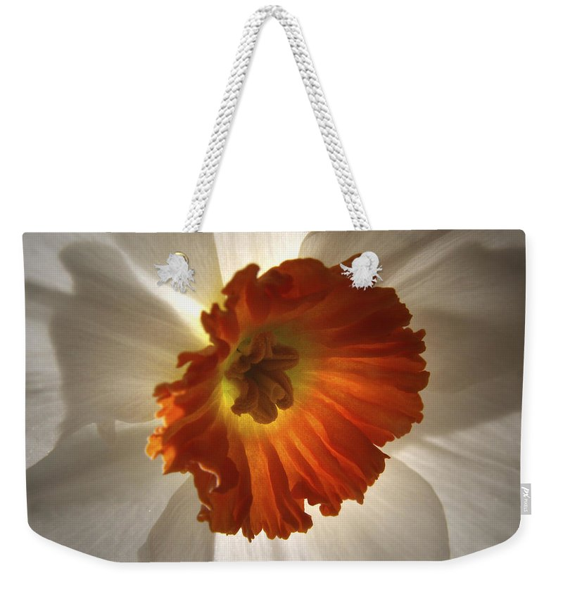Flowers Weekender Tote Bag featuring the photograph Flower Narcissus by Nancy Griswold