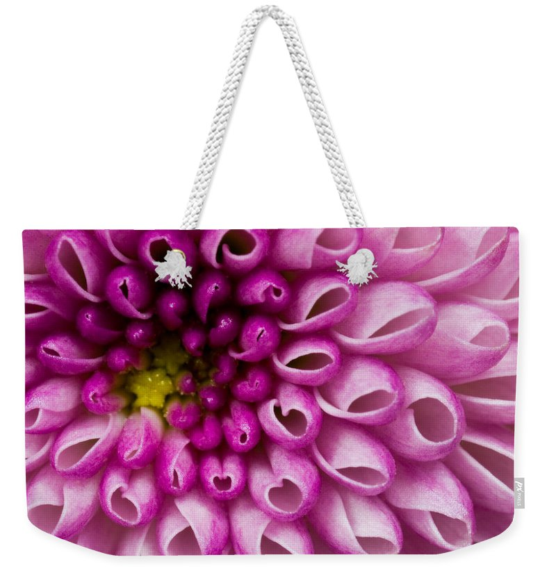 Flower Purple Weekender Tote Bag featuring the photograph Flower No. 4 by Andrew Giovinazzo