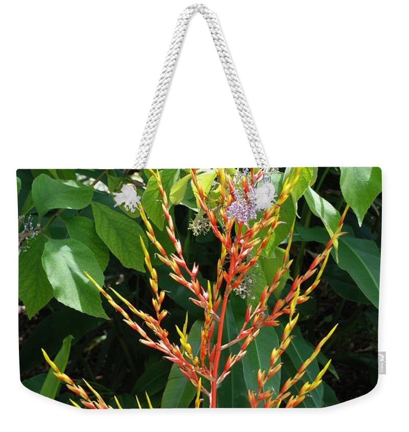Macro Weekender Tote Bag featuring the photograph Flower Plants by Rob Hans
