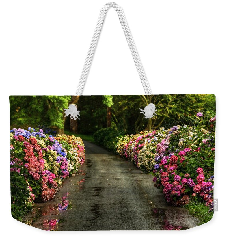 Road Weekender Tote Bag featuring the photograph Flower Road by Svetlana Sewell