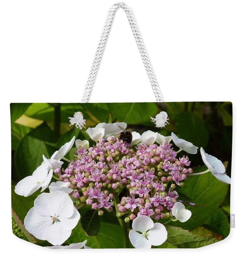 Flower Weekender Tote Bag featuring the photograph Flower by Sebastian Lehmann