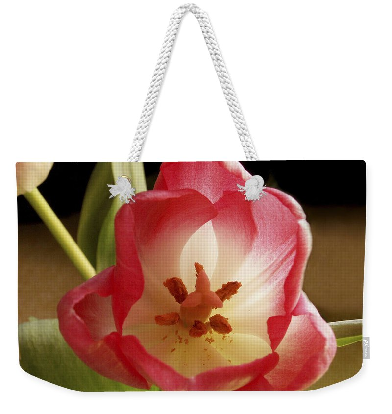 Flowers Weekender Tote Bag featuring the photograph Flower Tulip by Nancy Griswold