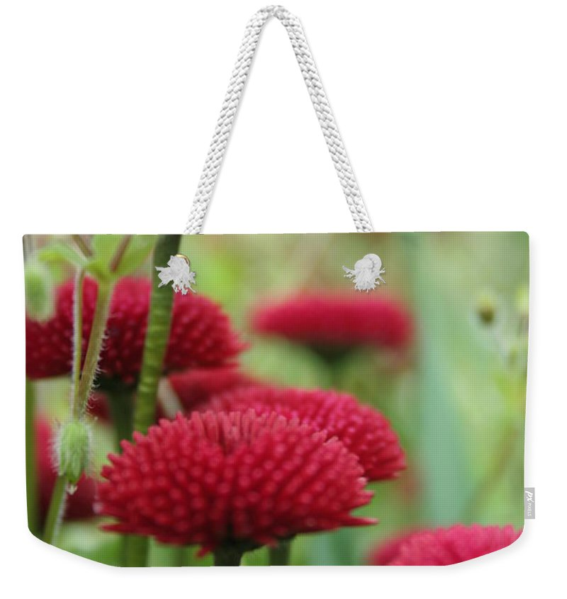 Flower Weekender Tote Bag featuring the photograph Flower1 by Angela Hansen