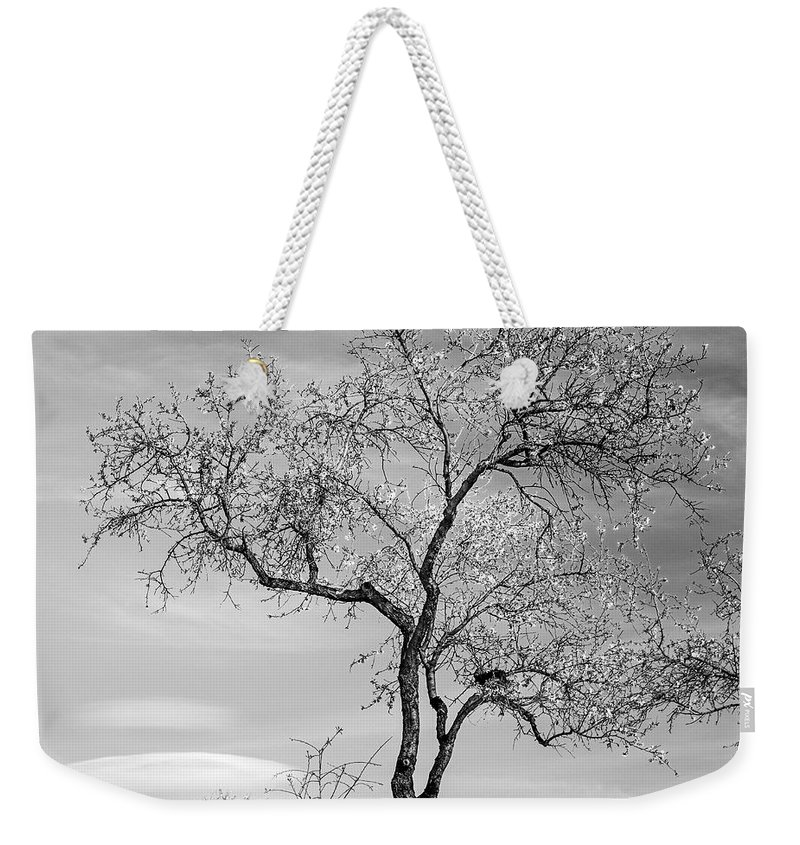 Monochrome Weekender Tote Bag featuring the photograph Trees Are Talking To Us by Guido Montanes Castillo