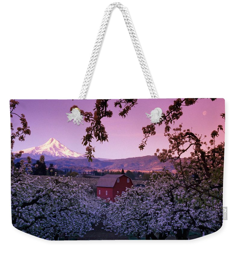Photography Weekender Tote Bag featuring the photograph Flowering Apple Trees, Distant Barn by Panoramic Images